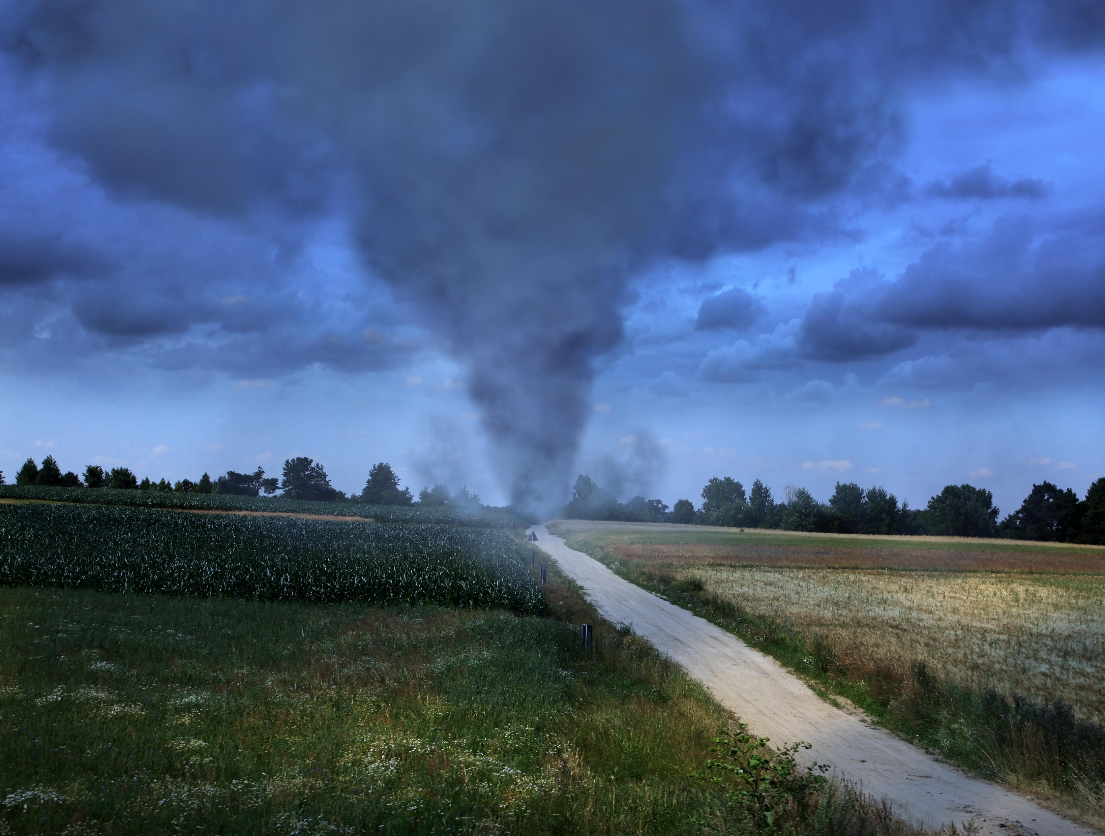 Торнадо языком минет 19 фотография